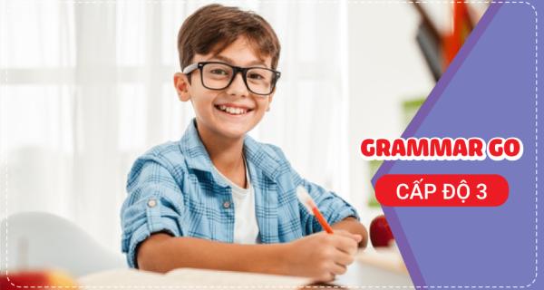 Grammar Go - Ngữ pháp chuyên sâu - Cấp độ 3